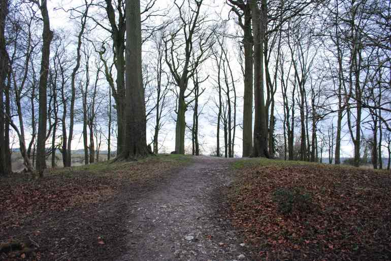 St Catherine's Hill, Winchester