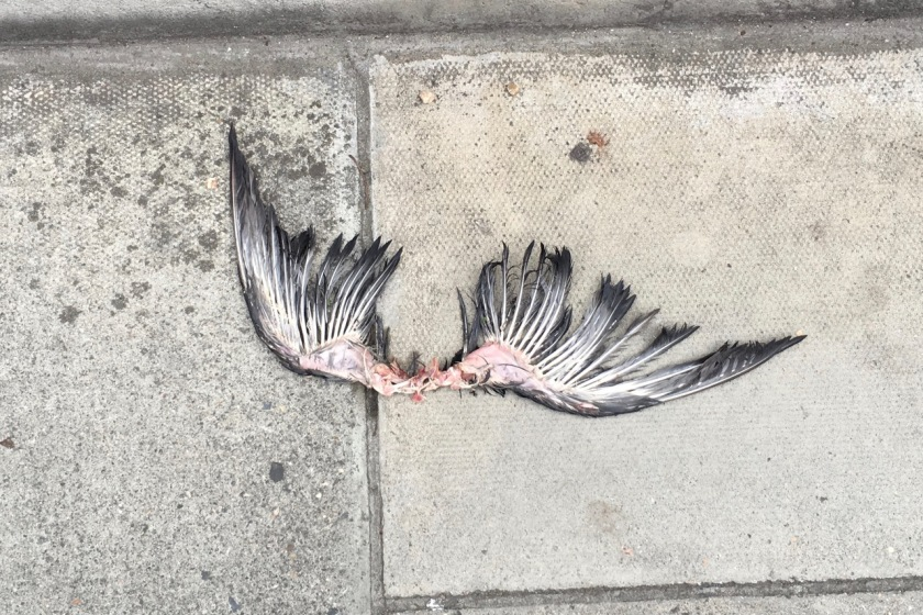 Cupid in Fitzrovia