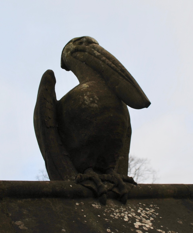 Cardiff animal wall pelican