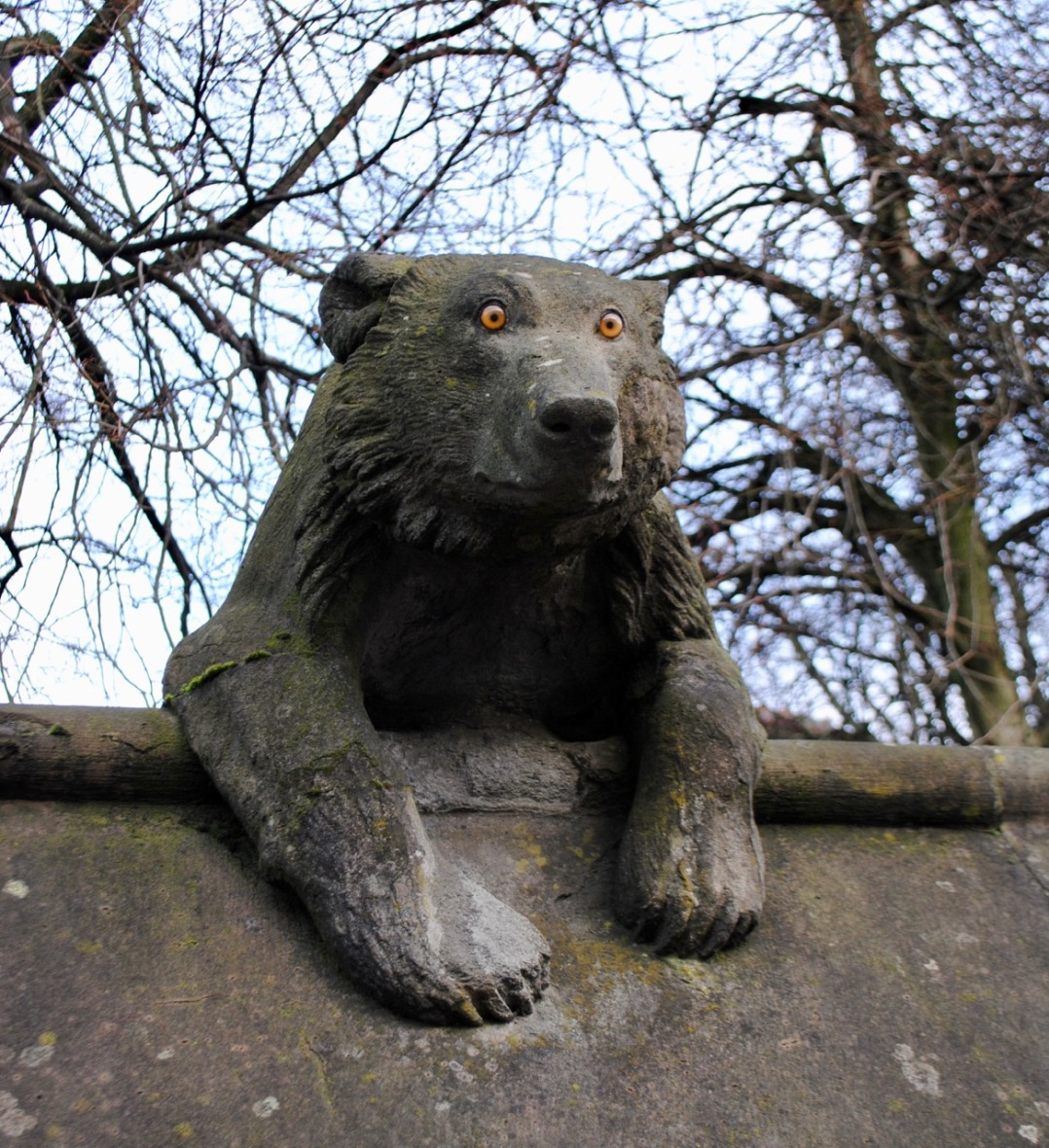 Cardiff animal wall bear