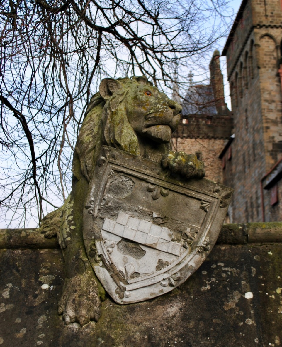 Cardiff animal wall lion 2