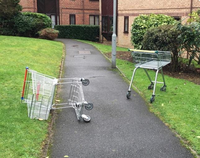 shopping trolleys on path